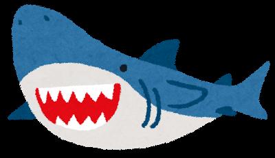 ミュージアムパーク・コレクション「サメ展」○o。.🐟めざせ!サメはかせ🐟.。o○